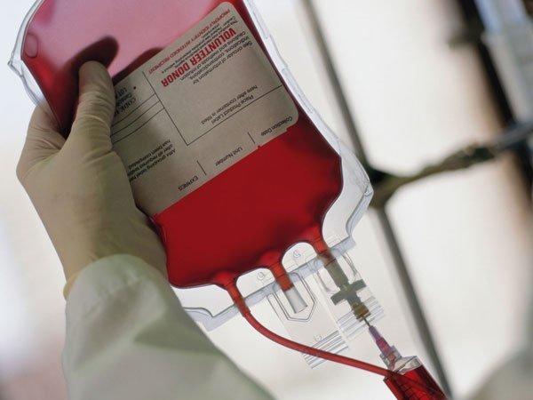 Чужая кровь – аналитический портал ПОЛИТ.РУ